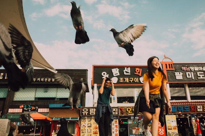 Oak St Studios - Franz and Dimples - Korea Prenup Engagement Photographer Photography