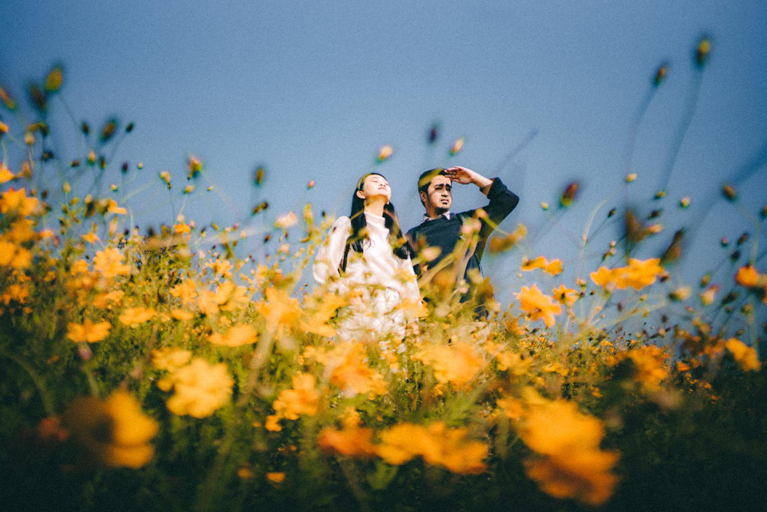 Oak St Studios - Nikko and Ven Seoul South Korea Engagement Wedding Photographer
